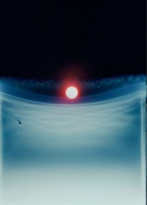 dries segers, dmw gallery, hits of sunshine