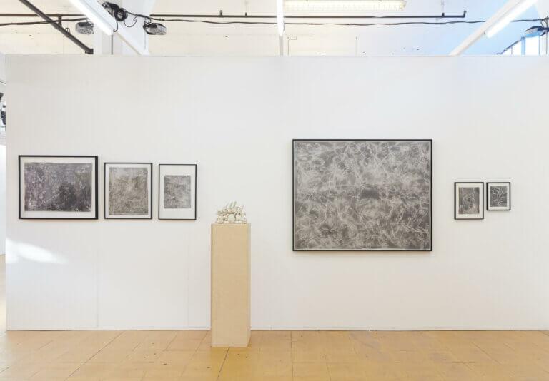 denitsa todorova, art rotterdam, dmw gallery