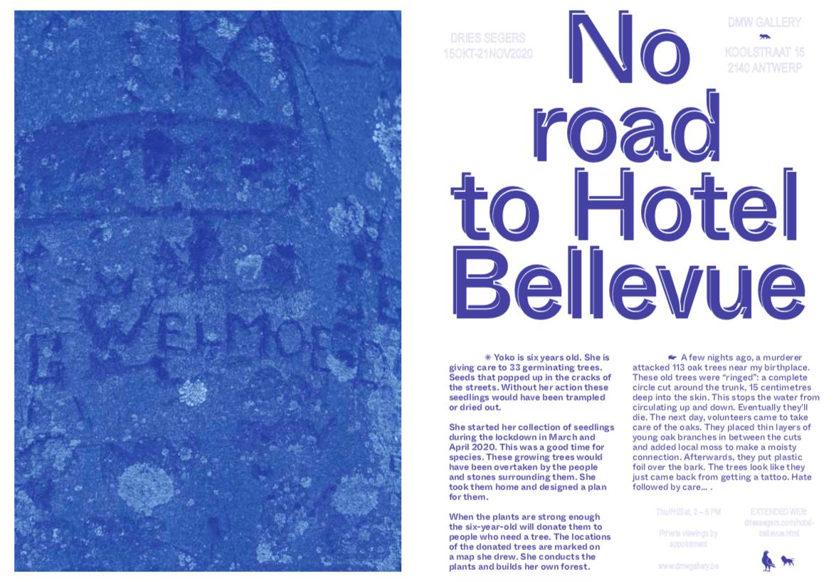 dries segers, dmw gallery, no road to hotel bellevue