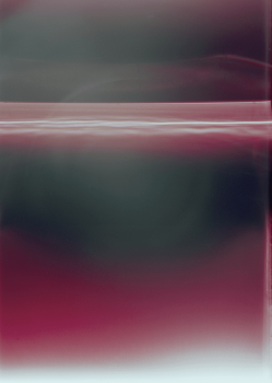 dries segers, photography, dmw gallery