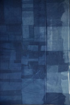 dries segers, cyanotype, dmw gallery