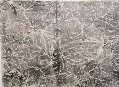 denitsa todorova, dmw gallery, tideway, drawing, graphite on paper