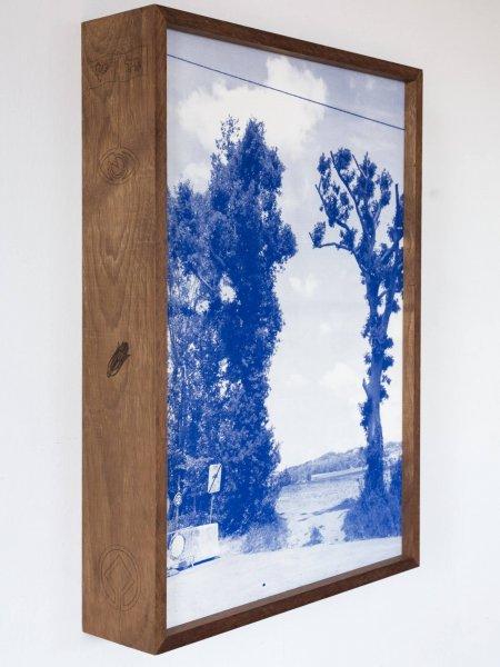 dries segers, grensbomen, photograph, dmw gallery