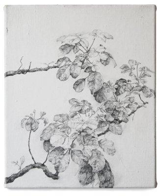joris vanpoucke, dmw gallery, beuk