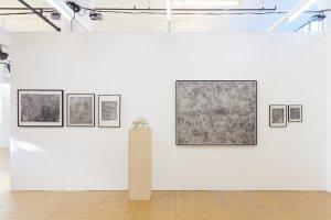 art rotterdam, denitsa todorova, dmw gallery