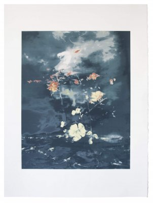 joris vanpoucke, dmw gallery, copper sky, mare, silkscreen