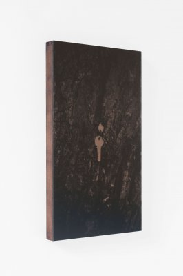 dries segers, dmw gallery, to take leave