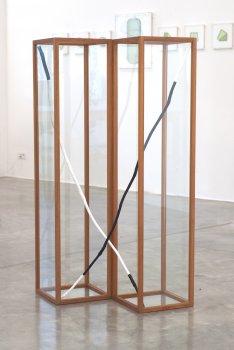Guy Rombouts, Ahobracus Capodacusbra, dmw gallery