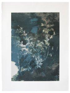 joris vanpoucke, edition, silkscreen, dmw gallery